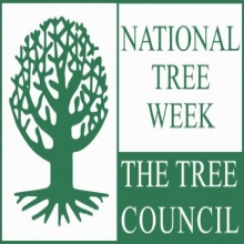 National Tree Week will take place this year from 4th -11th March 2018