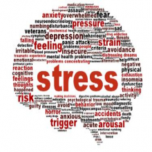Programme to help with stress control available online from today, 11 May, via Stresscontrol.org