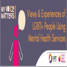 Views and Experiences of LGBTI+ Mental Health Service Users